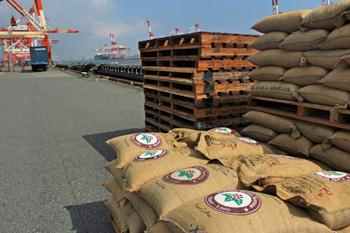 日本に東ティモールからコーヒーが届きました
