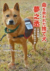 画像1: 命を救われた捨て犬 夢之丞  (1)