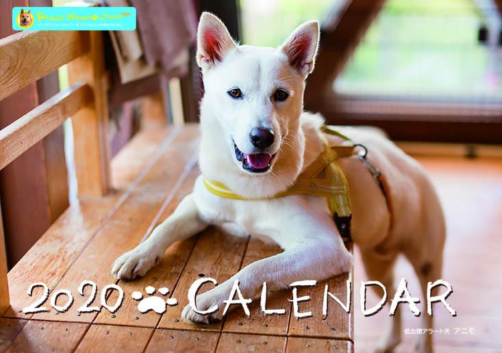 画像1: 【セール!】2020ピースワンコ壁掛けカレンダー (1)
